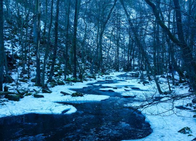 A Winter Hike in Söderåsen       National Park, Sweden