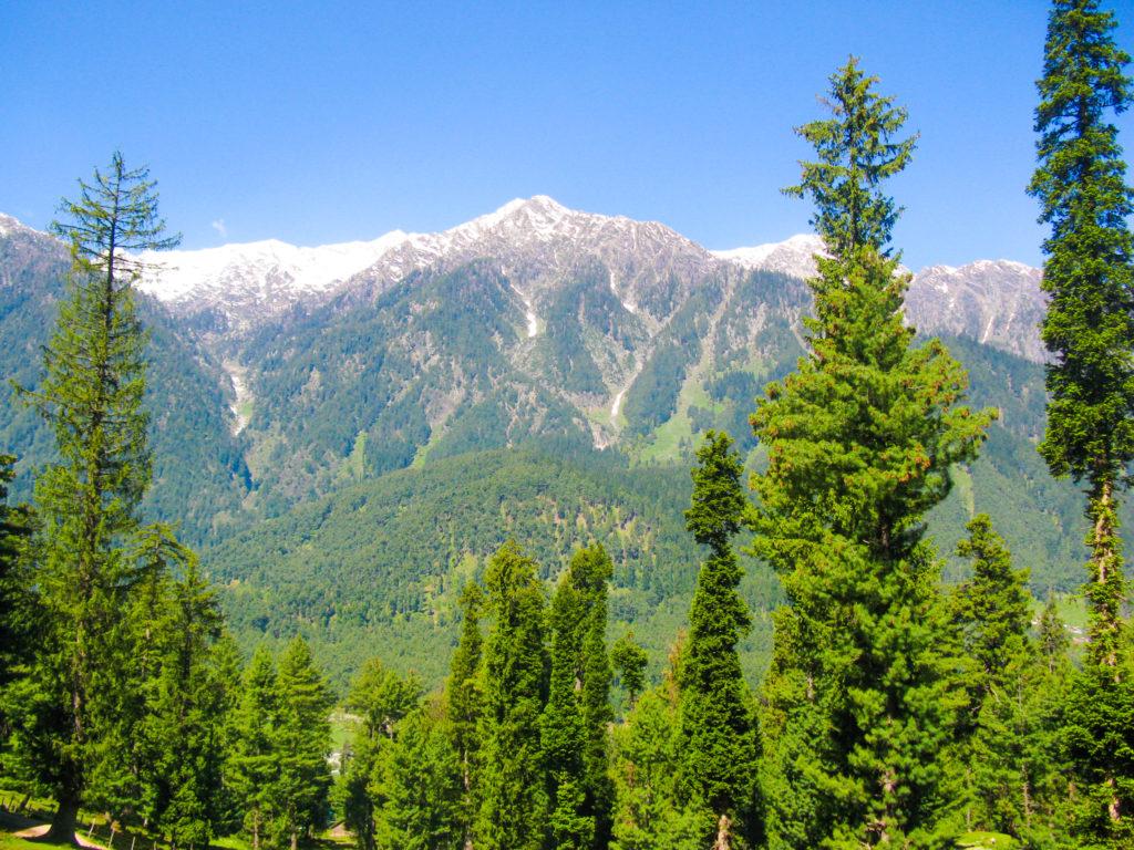 reasons to visit Kashmir