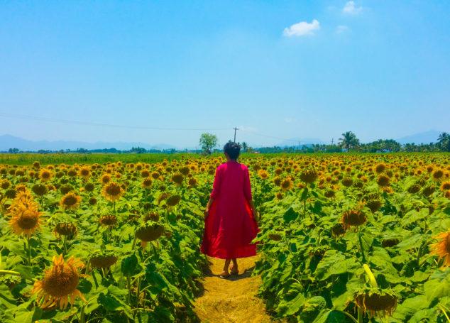 In Search Of Yellow Hues – A Weekend Getaway To Sundarapandiapuram