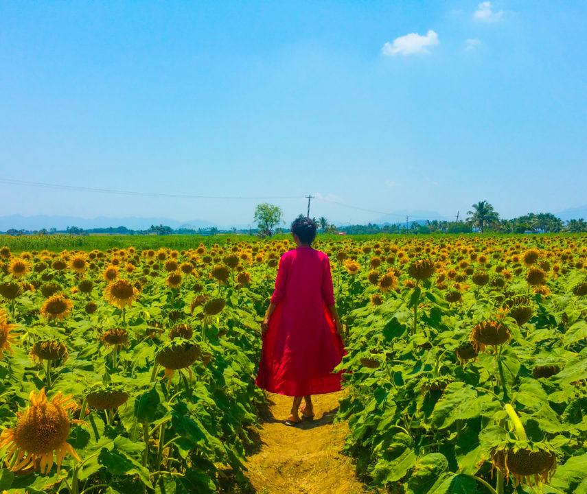A Weekend Getaway To Sundarapandiapuram