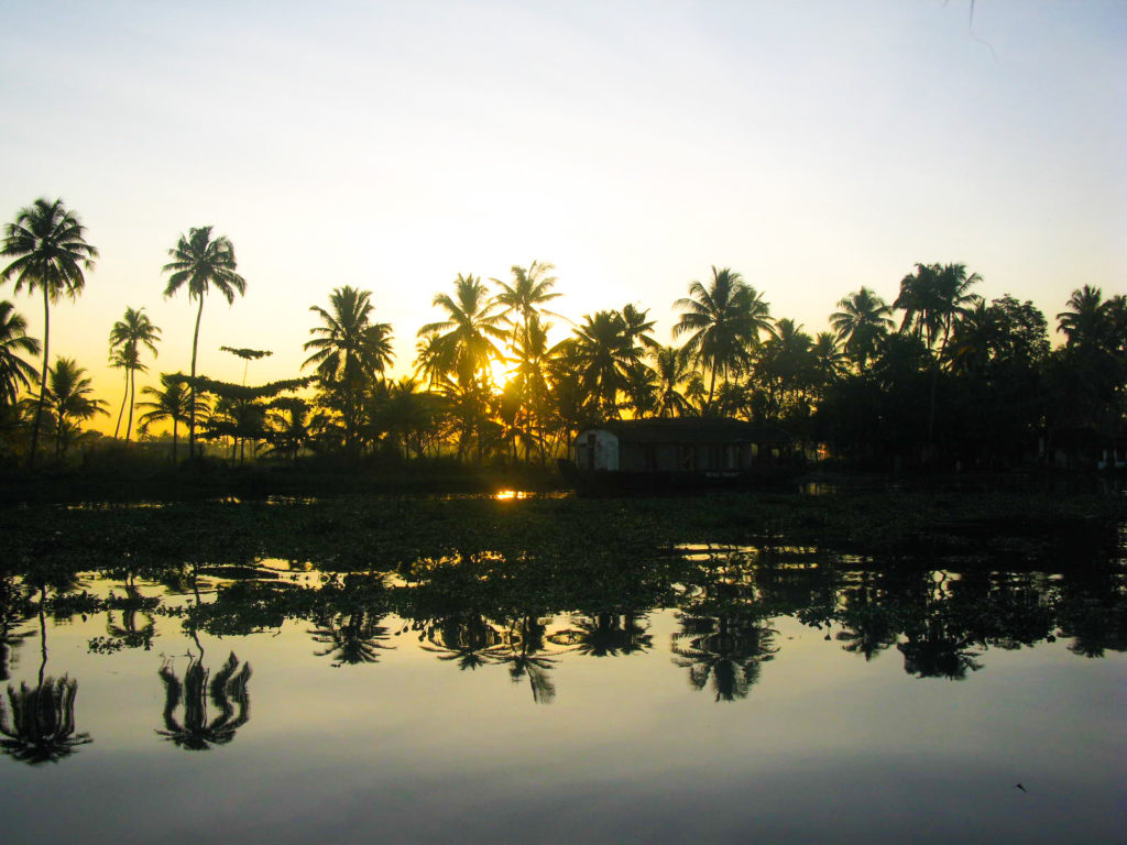Reasons to visit Alappuzha backwaters