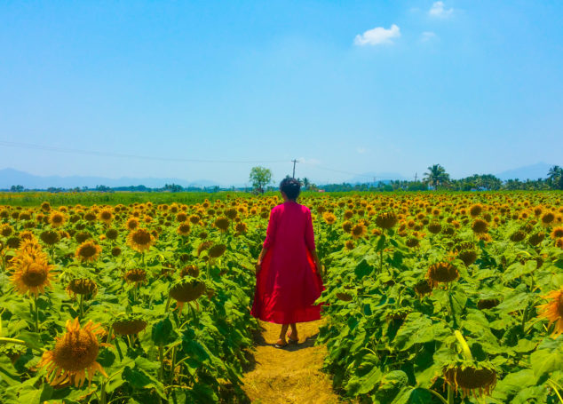 In Search Of Yellow Hues – A Weekend Getaway To Sundarapandiapuram