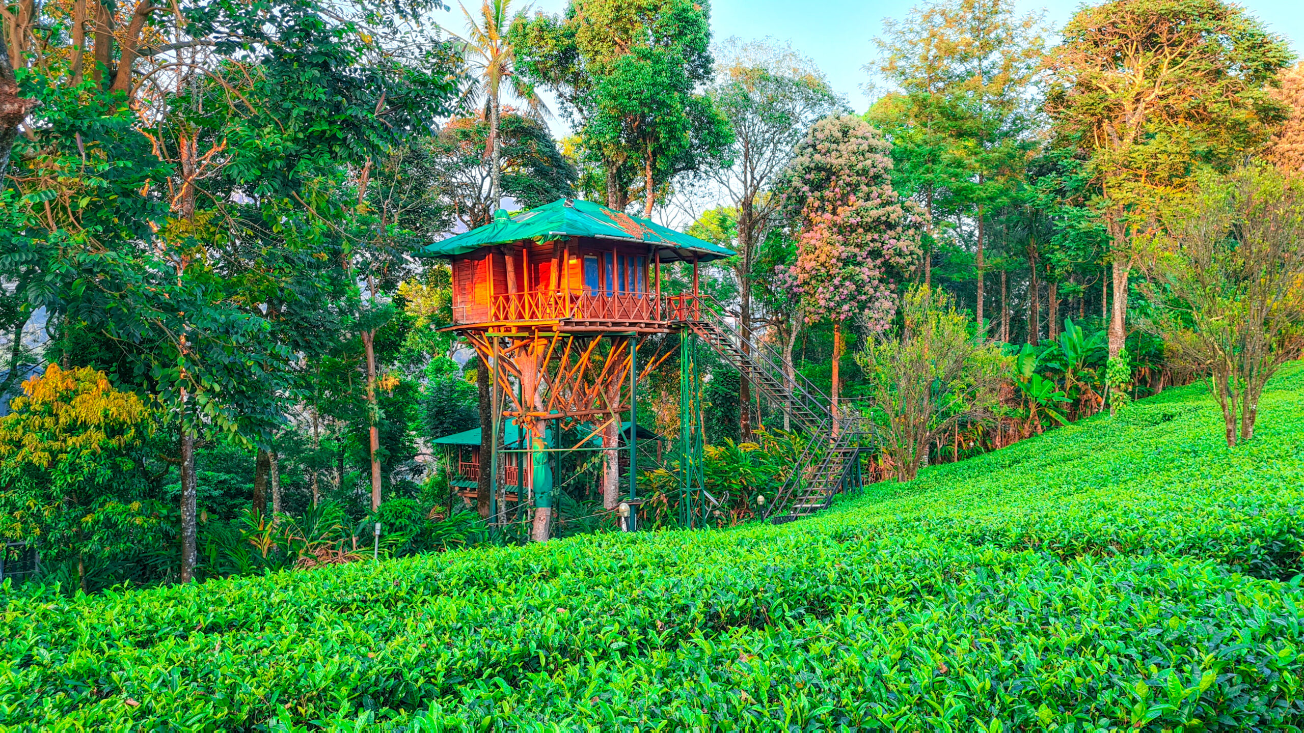 Dream Catcher Resort Munnar